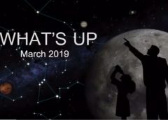 What's Up March 2019 by Dalal Allala
